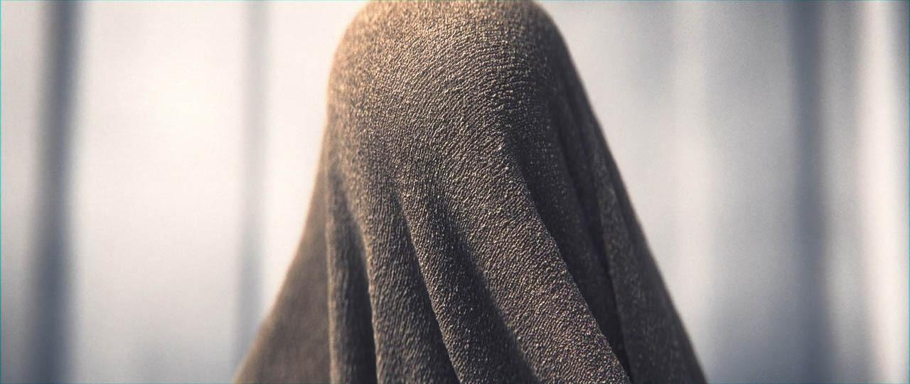 《隐藏》电影项目源文件+教程 Hidden by Sekani Solomon