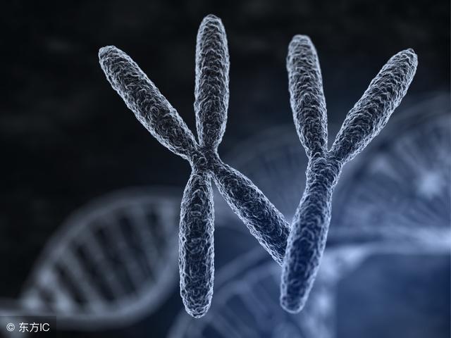 染色体异常到底意味着什么?医生一次给你讲明白