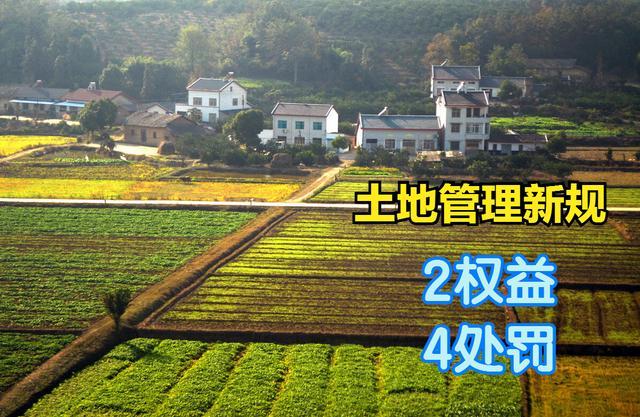 """土地管理新规:""""2权好"""",""""4责罚"""",9月首实施,农民请记牢"""