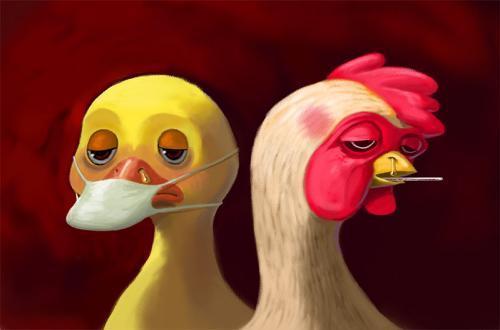周四A股涨停早知道:疫情缓解禽流感又来,两疫苗龙头全力供货