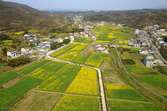 2021年!乡下土地改革迎来3个新倾向,家里有地的农民需知道