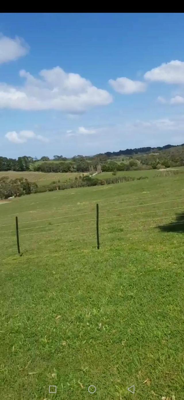 墨尔本的本地人农场
