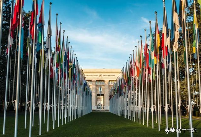 局势升级!联合国总部外发生抗议,印度军机坠毁,澳大利亚又乱了