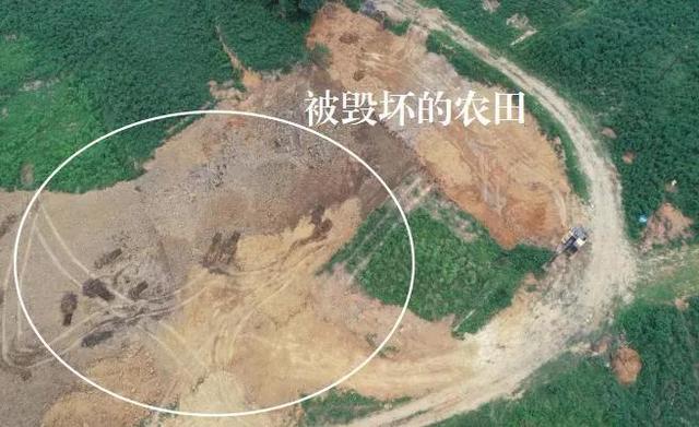 以土壤改良之名非法填埋 四川遂宁污泥处置监管严重缺失