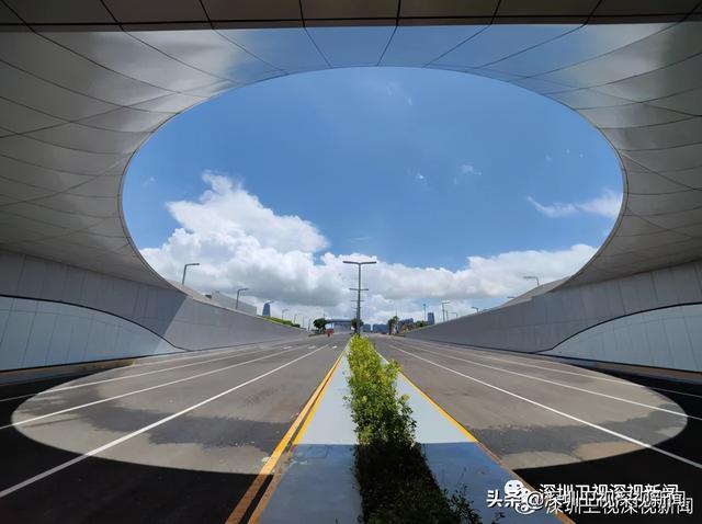 """中央高规格出台""""前海方案"""",广东这样贯彻落实"""