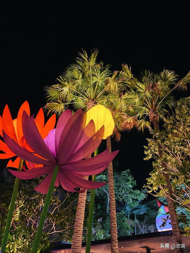 思窝星图腾:布里斯班节,艺术源于生活又高于生活,终将回归生活