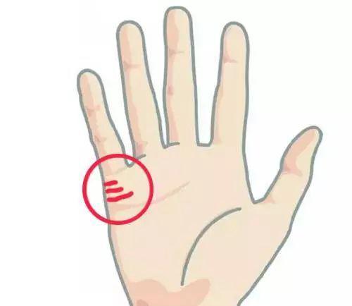 手掌解析运势图婚姻(手掌纹路运势解析)-第1张图片-天下生肖网