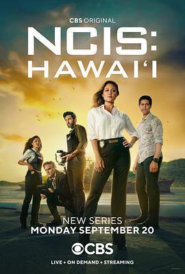 海军罪案调查处:夏威夷 第一季