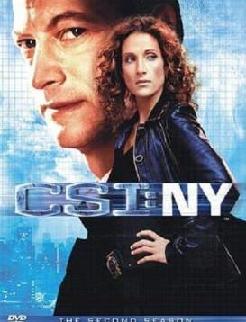犯罪现场调查:纽约第二季海报