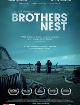 兄弟的雀巢海报