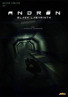 安德烈:黑色的迷宫 电影海报
