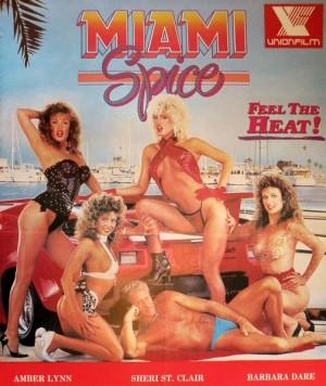 迈阿密女警察海报