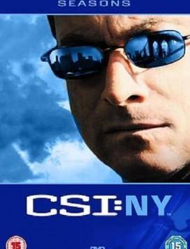 犯罪现场调查:纽约第六季海报