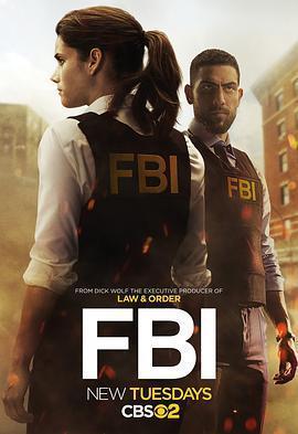 联邦调查局 第一季海报