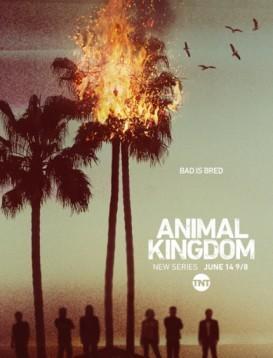 野兽家族 第一季海报