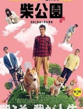 柴犬公园海报
