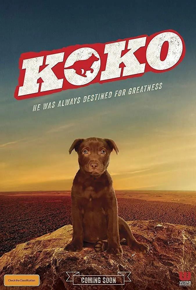 Koko:红犬历险记海报