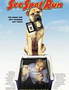 警犬追杀令海报
