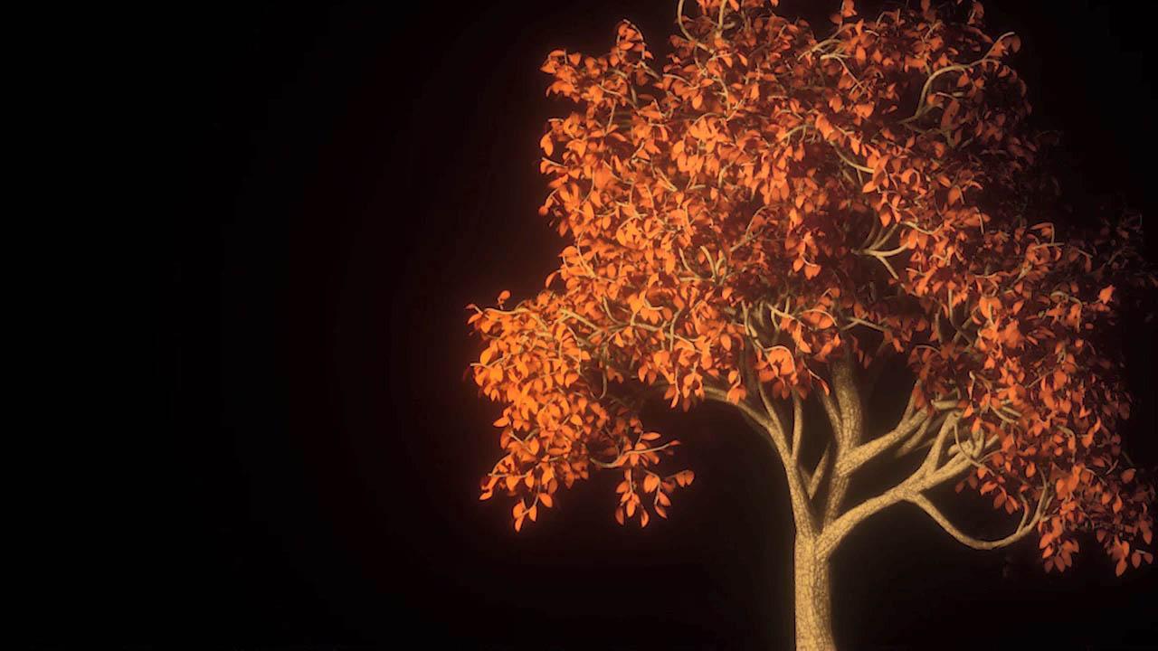 How to make an Easy Realistic Nature Tree Scene in Cinema 4D Octane – C4D植物场景渲染教程