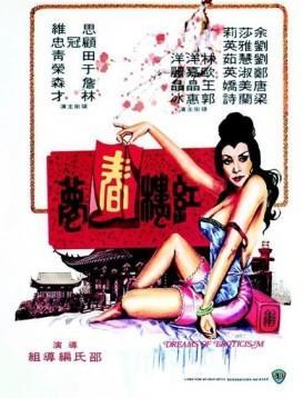 红楼春梦海报