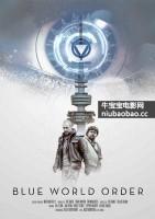 蓝色世界秩序海报