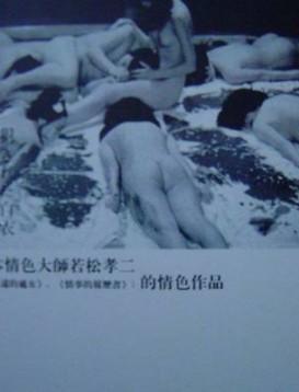 荒野浪妻海报