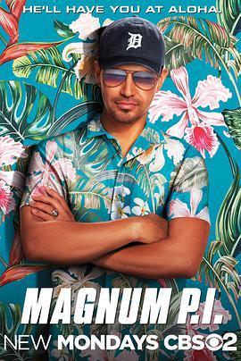 新夏威夷神探 第一季海报