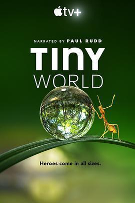 小小世界 第一季