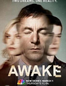 异度觉醒 第一季海报