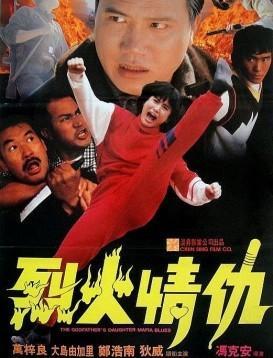 烈火情仇海报
