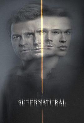 邪恶力量 第十五季海报