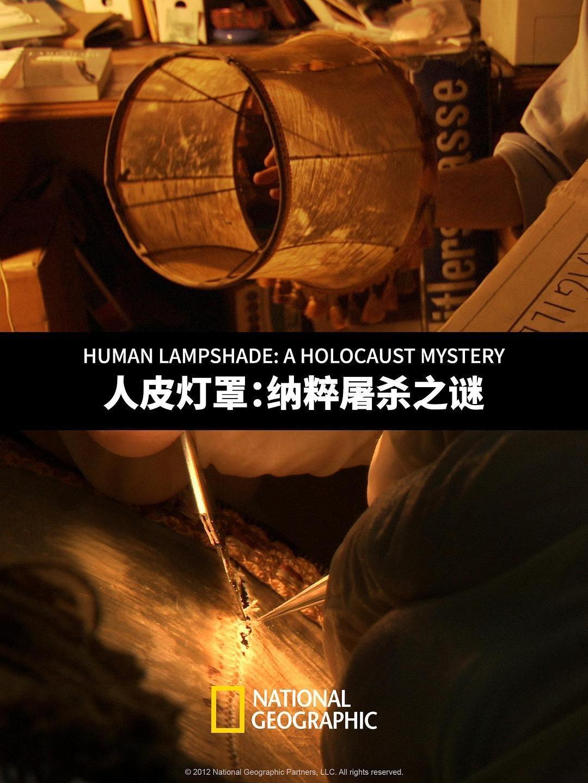 人皮灯罩:纳粹屠杀之谜海报