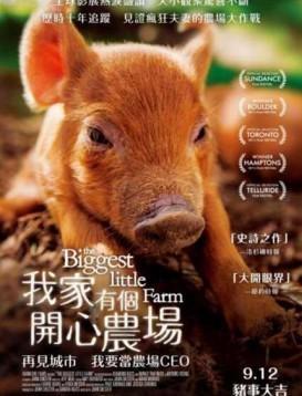 最大的小小农场海报