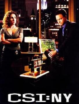 犯罪现场调查:纽约第五季海报