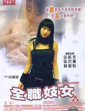 全职妓女海报