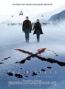 X档案:我要相信海报