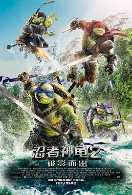 忍者龟:魅影突击