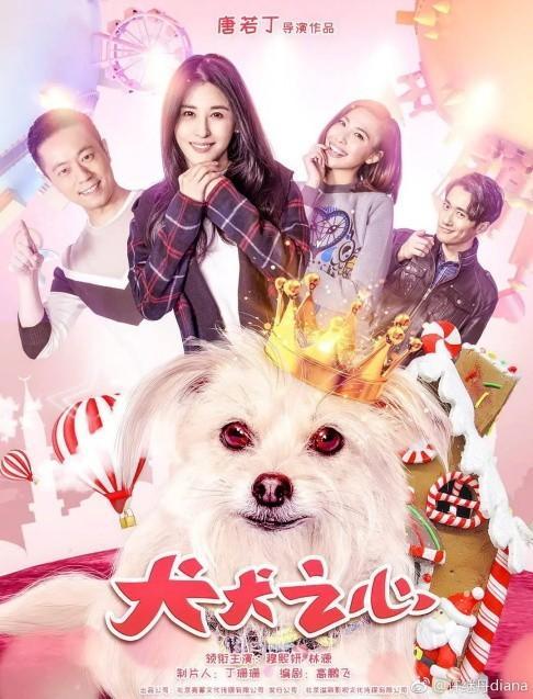 犬犬之心海报