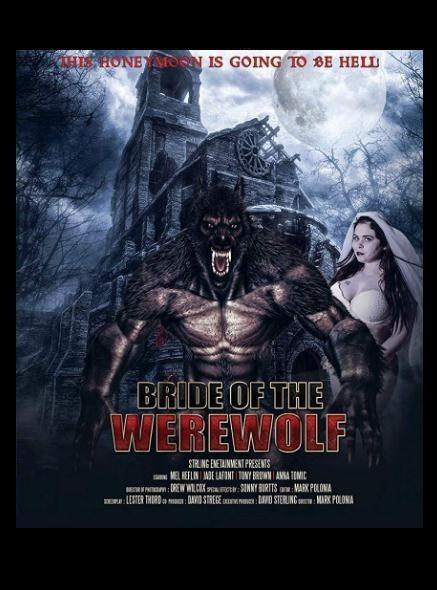 狼人的新娘海报