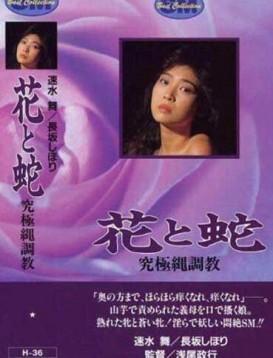 花与蛇4:究极绳调教海报
