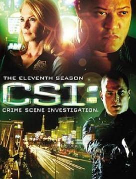 犯罪现场调查 第十一季海报