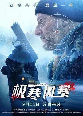 极寒风暴海报