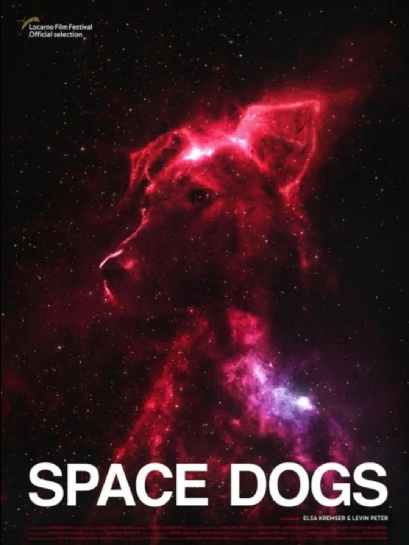 太空狗海报