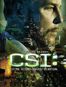 犯罪现场调查 第八季海报