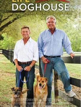 拯救狗狗二人组海报