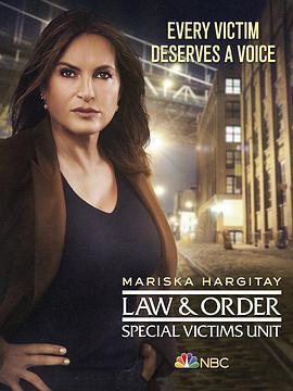 法律与秩序:特殊受害者 第二十二季海报
