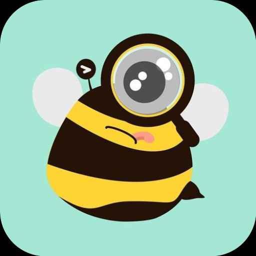 蜜蜂追书Pro优化版