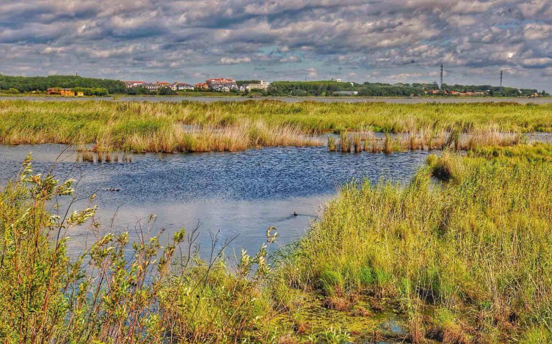三江平原湿地,地球的宝藏库之一