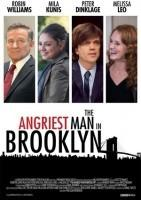 布鲁克林最愤怒的人海报