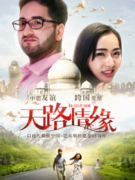 天路情缘 电影海报